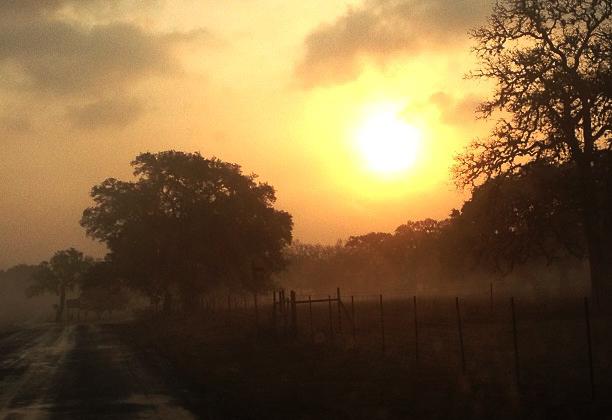 Early morning back road in Boerne Texas taken by Brandi Quinn
