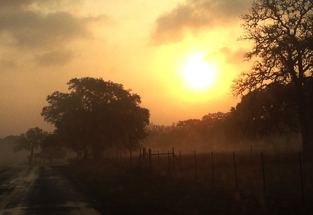 Early morning back road in Boerne Texas taken by Brandi Quinn