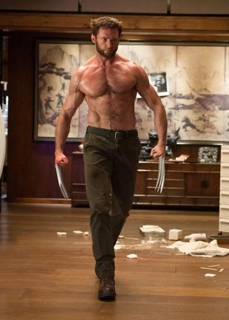 The power of Hugh Jackman as Wolverine
