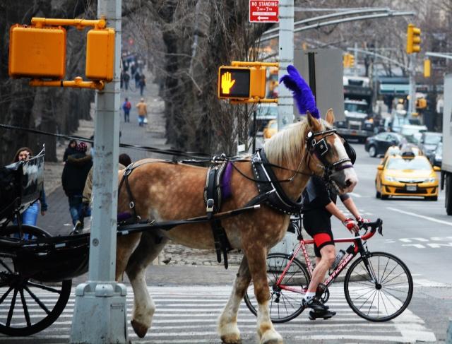 Sensory overload in New York City.