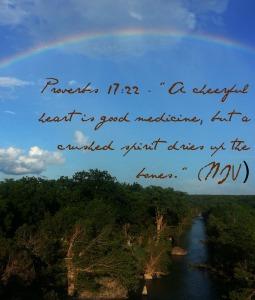 Proverbs 17:22 -