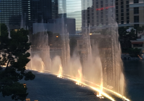 The Water Fountain at the Bellagio is worth the time to see.  - Jolene Navarro