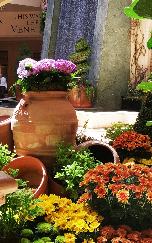 The Palazzo had several displays made up of flowers. Photo Jolene Navarro