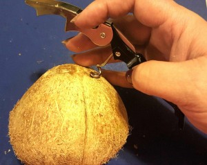 "You can use a cork-screw or a Philips screw-driver with a hammer to punch holes in the three ""eyes"" of the coconut."